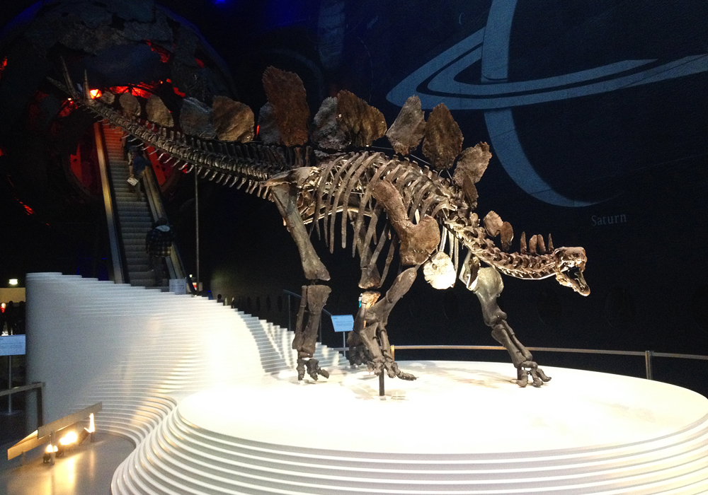 isabella-blume-natural-history-museum-ravelblogger-vegan-london-uk-dinosaur