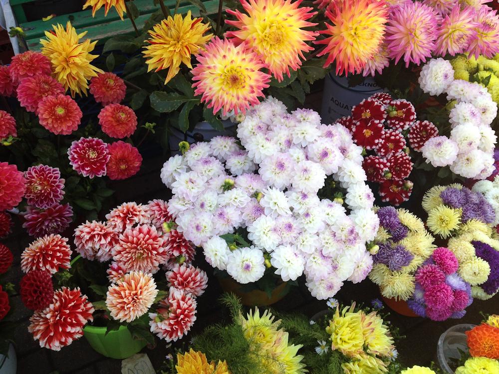 isabella-blume-riga-travelblogger-markthallen-flowers-fruits-veggies-vegan-foodblogger