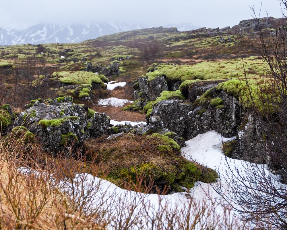 isabella-blume-iceland-travelblogger-vegantravel-roadtrip-8